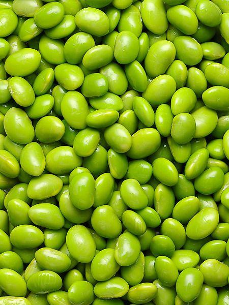 Kernbohnen - Lima Bohnen (8-10)