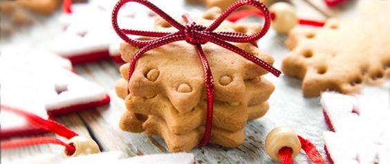 biscoitos de cenela e gengibre