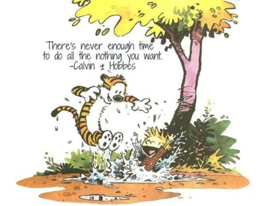 Calvin And Hobbes Life Lessons (20 Photos)