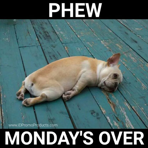 Phew Funny phew     monday s over  for a giggle pinterest mondays