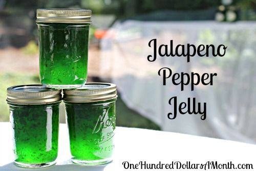 Jalapeno Jelly... I don't like the green ...Ingredients    6 oz jalapeño peppers, steamed, seeded, and chopped  1 cup cider vinegar, divided  3 cups sugar  1 3-oz pouch liquid pectin {I used  3 drops green food coloring {optional}  3 (8 oz) half pint glass preserving jars with lids and bands