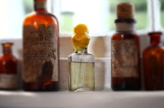 Neben den Parfumfläschchen von Piesse & Lubin fanden die Unterwasserarchäologen auch Weinflaschen.