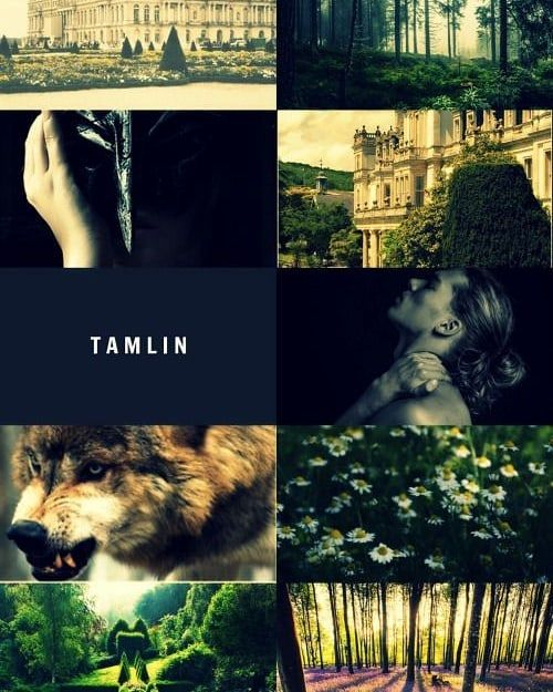 Spring Court Aesthetic Not Made By Me Tamlin Beastboy Beast