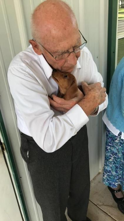 I Took The New Pup To The Nursing Home Next Door They Instantly Became Best Friends Doxie Love Puppy Dog Pictures Cute Puppies Cutest Puppy Ever