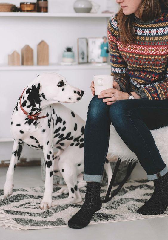 Maggie, le joli dalmatien de Anne du blog Le Chien à tâches que j'aime beaucoup. Cette photo provient de l'article 25 choses sur moi.