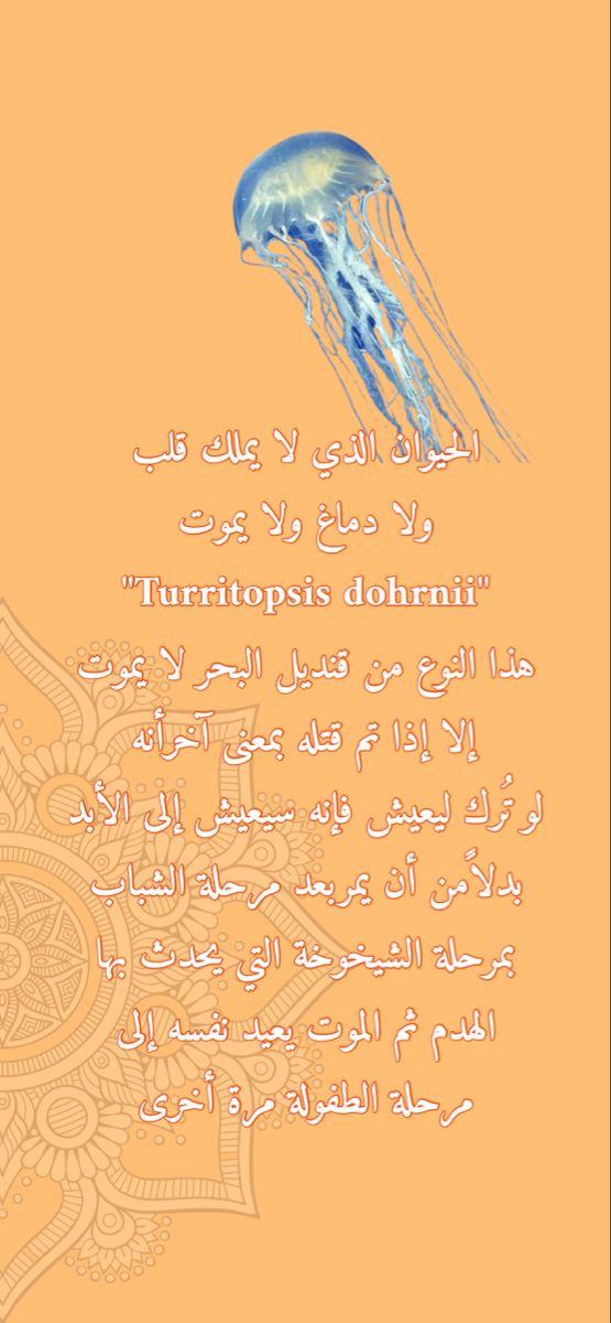 السعوديه الخليج رمضان الشرق الأوسط سناب كويت فايروس كورونا تصميم شعار لوقو دعاء Snapchat Calligraphy Arabic Calligraphy