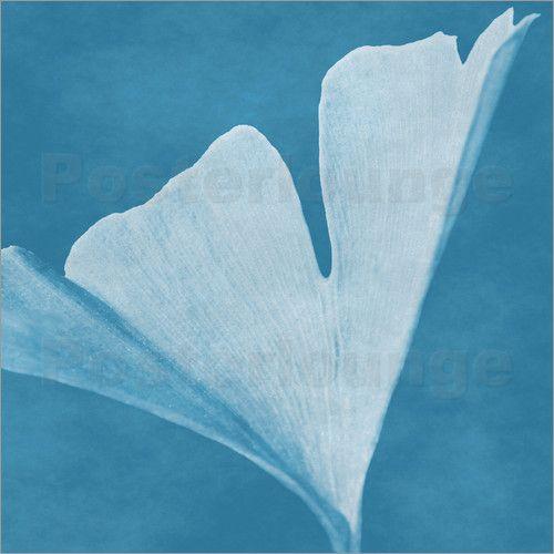 Poster Gingko Blatt blau - © Christine Bässler - Bildnr. 153334