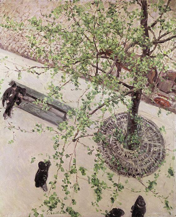 'Le Boulevard vu d'en haut' (1880) Caillebotte