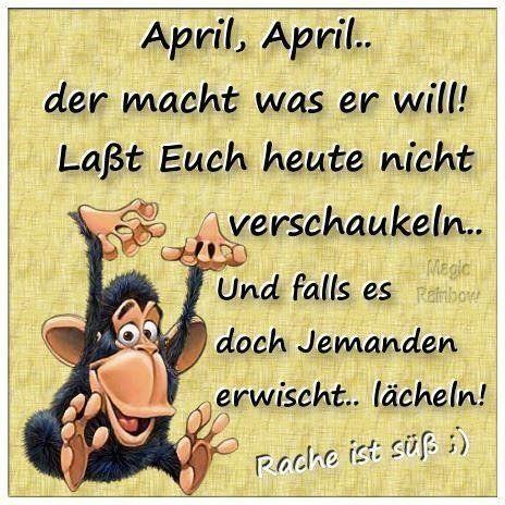 1 April Bilder Aprilbilder Lustig Lustige Bilder Dumme Ex