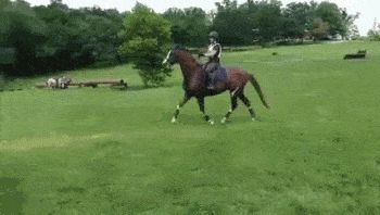 21 Best GIFs Of All Time Of The Week
