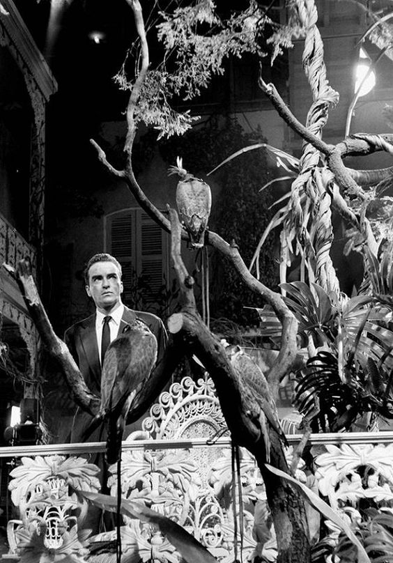 Montgomery Clift on the set of;Suddenly, Last Summer',1959.Photo by Burt Glinn.    (Source: oldhollywood)