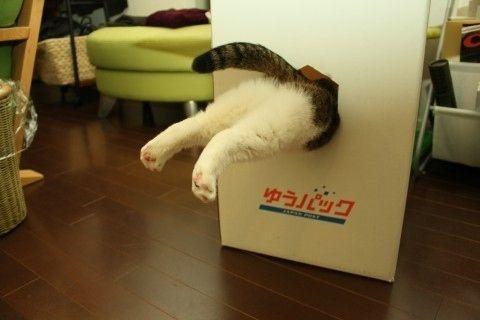 """Let's Play Portal 2!!"""