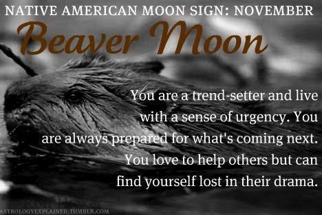 `November Beaver Moon