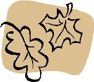 24.10.2015 Workshop Herbstcollagen! Dalle ore 15.30 alle ore 17.30!In via Anfiteatro 12 Prima ascoltiamo una bella storia e dopo realizziamo i nostri lavori con materiali naturali di stagione . Per bambini dai 4 ai 10 anni. Costo ad incontro Euro 18 a bambino incluso una merenda a base di frutta di stagione. Per prenotazioni o informazioni scrivete  a : Info@spielecke.it