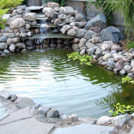 Photos backyard water features backyards stand in and for Coy pond waterfall