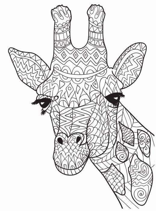 Baby Giraffe Coloring Page Luxury Free Giraffe Coloring Pages For Adults Ausmalbilder Malvorlagen Kostenlose Erwachsenen Malvorlagen
