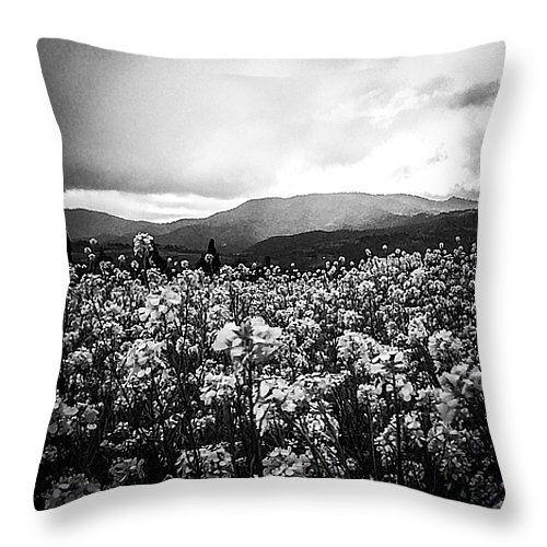 Journey throw pillow by Shauna De Bella