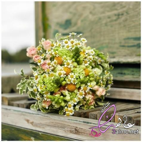 اجمل باقة ورد رومانسية خلفيات ورود جميلة جدا2019 اروع صور ورد2019 اجمل ورود العالم Floral Wreath Floral Wreaths