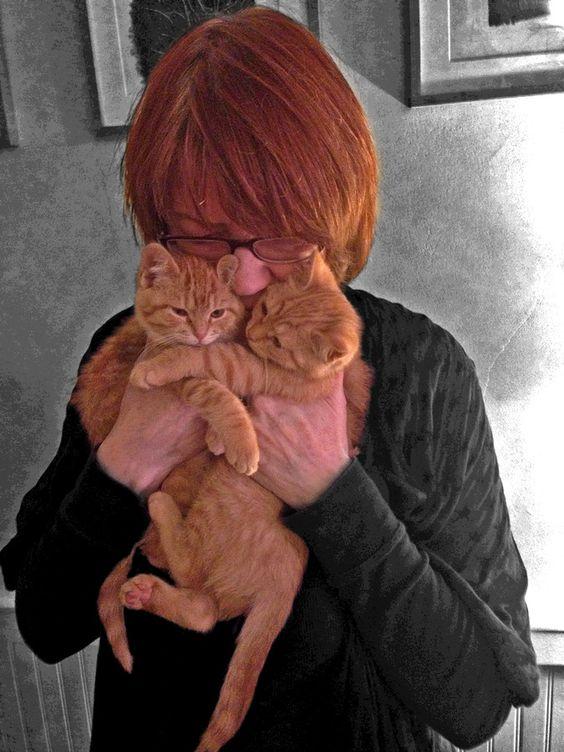 2 Orange Kitties by Mama Blair on 500px