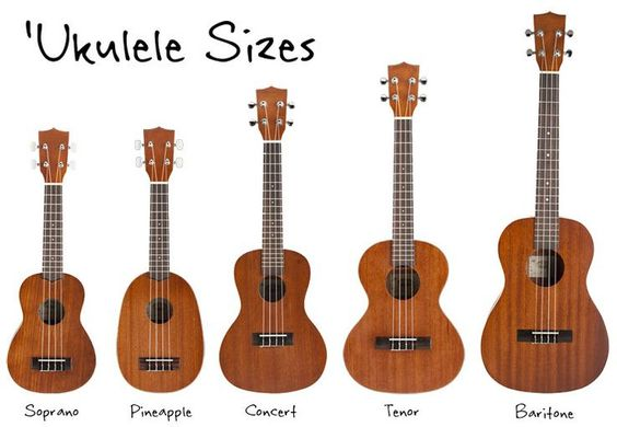 Um comparativo de tamanhos dos ukuleles soprano, abacaxi, concert, tenor e barítono. Estão do menor para o maior na ordem escrita anteriormente.