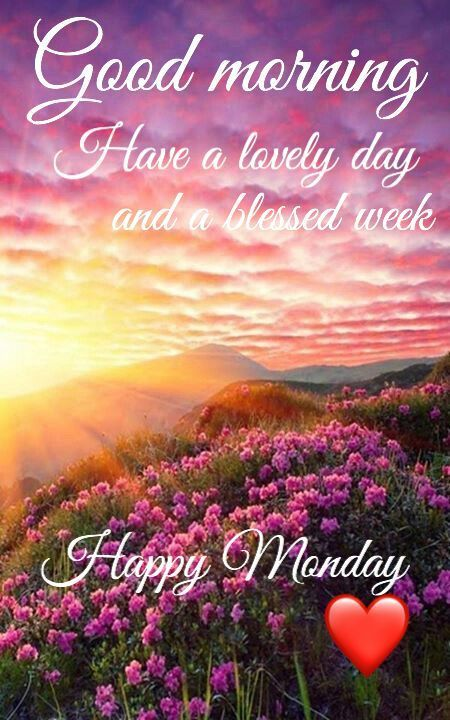 Good Morning, Have A Lovely Day And A Blessed Week. Happy Monday.