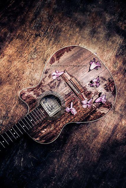 mi guitarra y flores de lapacho by Karina Diarte, via Flickr