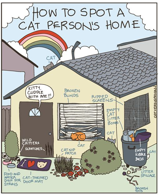 Cat Person's Home