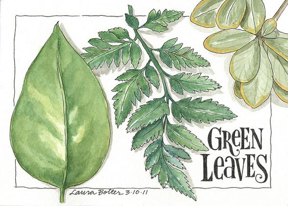 Sketchbook & Watercolor Journal Style Lesson Two by lbolter, via Flickr