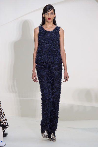 Dior - Primavera/ Verão 2014