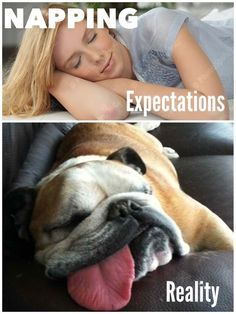 Expectation vs reality funny pictures - Google Search: