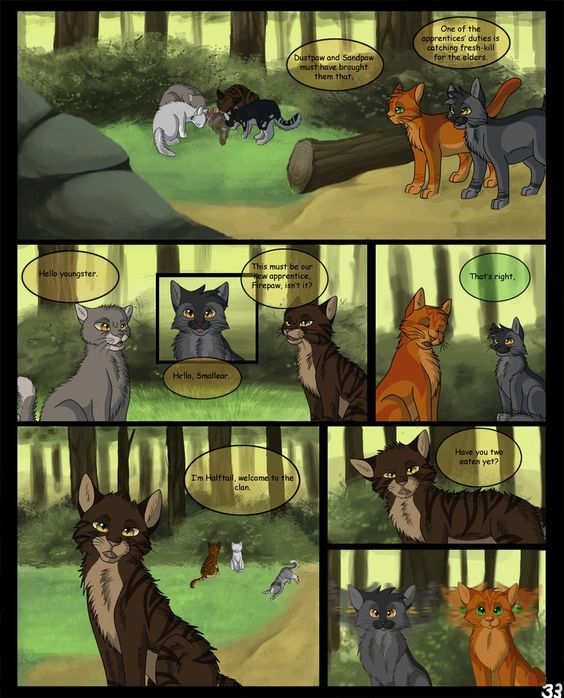 Into The Wild Graypaw Warriors: Into The Wild, The Wild And Warriors On Pinterest