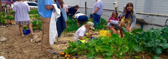 Mountain Roots Food Project - Gunnison, CO #colorado #GunnisonCO #shoplocal #localCO