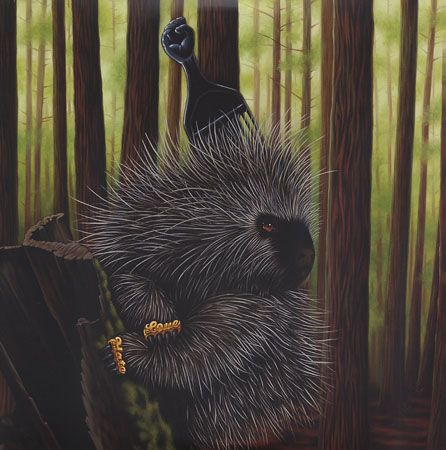 porcupine with a pick! from Madlib album
