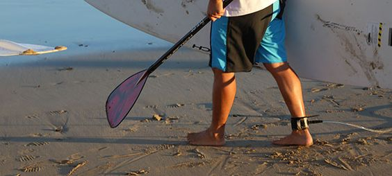 Instructors: Course dates Asia-Pacific-NZ | Academy of Surfing Instructors