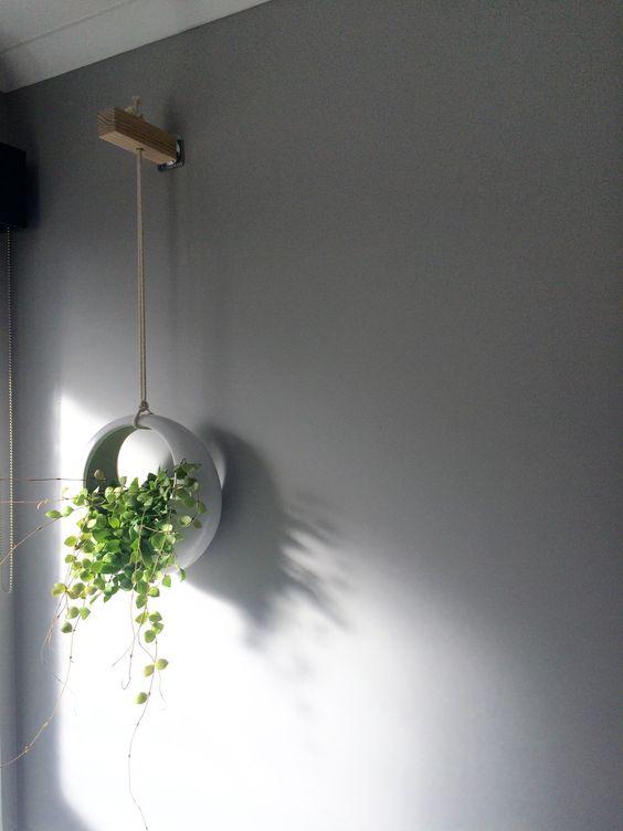 Hanging pot in bathroom kmart office pinterest for Bathroom ideas kmart