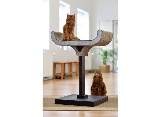 kratzbaum corbeille cat stuff pinterest b ume katzen und m bel. Black Bedroom Furniture Sets. Home Design Ideas