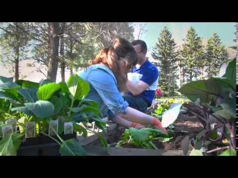 Medary Acres Greenhouse, Brookings, SD - We Grow Happiness - YouTube