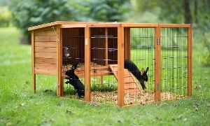 Groupon - Prevue Pet Products Rabbit Hutch and Extension Playpen in [missing {{location}} value]. Groupon deal price: $104.99