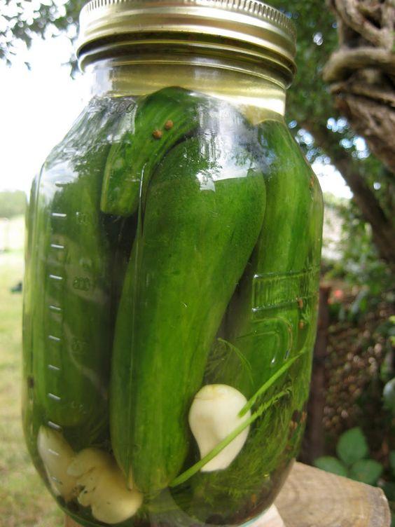 kosher-jewish-pickles.jpg 1 200×1 600 pixels
