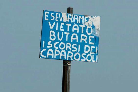 """Matteo Cargasacchi: in laguna e in veneziano"""" é vietato gettare i gusci delle vongole!"""""""