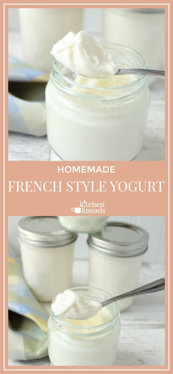 French Style Yogurt Recipe French Yogurt Recipe Homemade