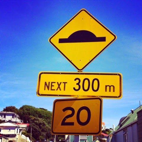 Billys Reise: Wellington - Zwischen Wind und Sonne.