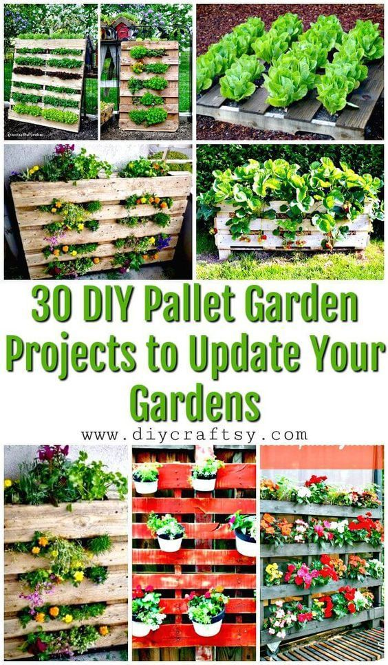 Build A Raised Bed Garden Using Pallets Pallet Projects Garden Diy Garden Projects Herb Garden Pallet
