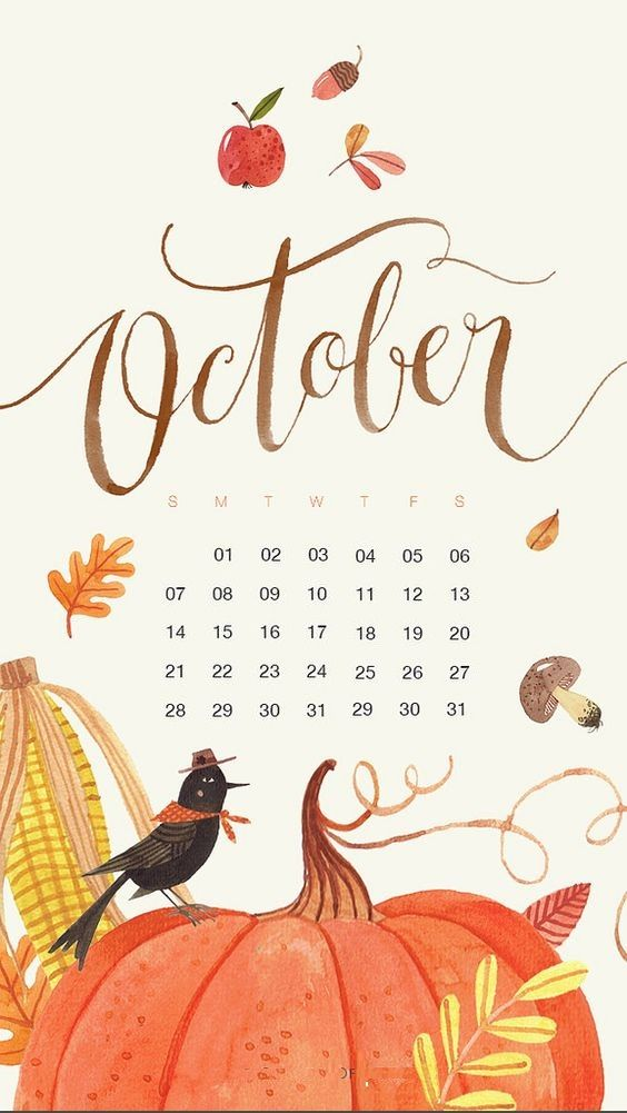 October 2018 Smartphone Calendar Wallpaper Jpg 564 1001 Herbst Hintergrund Iphone Wallpaper Herbst Halloween Hintergrund