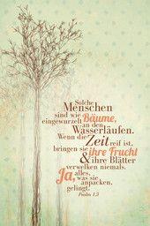 SCM Collection im SCM-Verlag