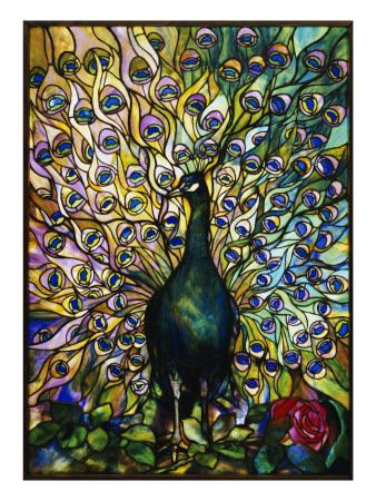 Stained glass peacock.  Inspirrraaaaatiooonnnn.....