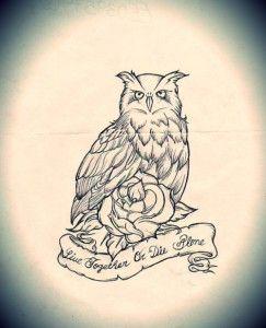 Tatuagens criativas de corujas variadas 99