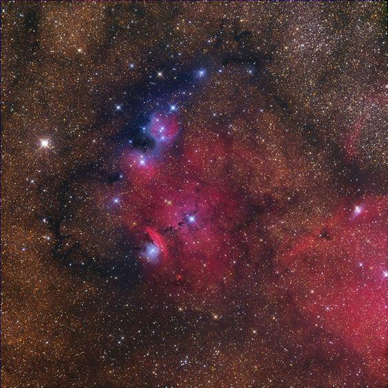 NGC 6559 Gerald Rhemann from Vienna, Austria
