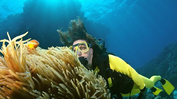 Diving the Great Barrier Reef in Australia.