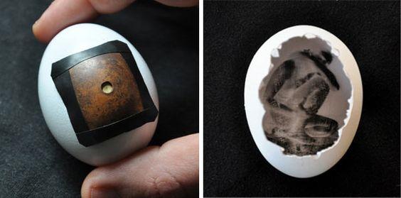 Crazy Awesome: Egg Pinhole Camera